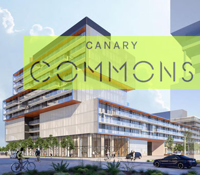 Dream - Canary commons